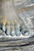Foot — Stock Photo