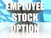 Employee Stock Option — Stock Photo