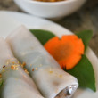 Vietnam spring roll — Stock Photo