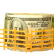 Fence and US dollar — Stock Photo