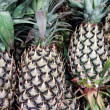 Pineapple — Stockfoto #35055621