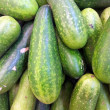 Hairy cucumber — Stock Photo #35055795