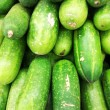 Hairy cucumber — Stock Photo #35057195