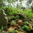 Old Malay graveyard — Stock Photo