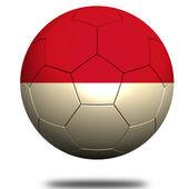 Futebol de Mônaco — Fotografia Stock