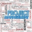 Project management word cloud — ストック写真