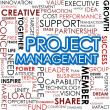 Project management word cloud — 图库照片