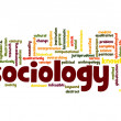 Sociology word cloud — Stock Photo