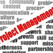 Project management word cloud — Stock Photo #41430997