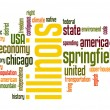 Stock Photo: Illinois word cloud