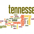 Stock Photo: Tennessee word cloud