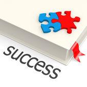 Livro de sucesso — Foto Stock
