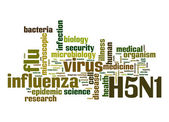 H5N1 word cloud — Stock Photo