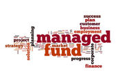 Managed fund word cloud — Stock Photo