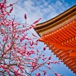 Kyomizu-dera temple, Kyoto, Japan — Stock Photo