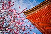 Kyomizu-dera temple, Kyoto, Japan — Stock Photo