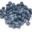 Blueberries from the wood isolated — Stock fotografie