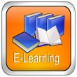 Stock Photo: E-Learning Button