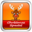 Button Christmas Special with reindeer — Stock fotografie