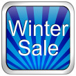 Button winter sale - Stock Photo