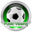 Stock Photo: Button Public Viewing with Soccer ball