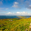 Stock Photo: Landscape in Dingle Peninsula