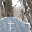 Stock Video: Cemetery Orthodox (Russian)