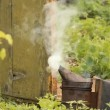Smoker filmed against the backdrop of setting sun. The end of day in apiary. — Vídeo Stock