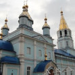 Russian Orthodox Church — Vídeo de stock