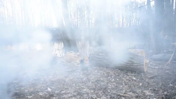 Fogata cerca del lago — Vídeo de stock
