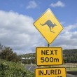 Kangaroo sign in Australia — Stock Photo