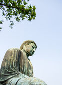 Big buddha statue in Kamakura Japan6 — Stockfoto