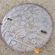 Manhole in Japan — Stockfoto #41617027