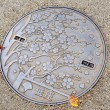 Stock Photo: Manhole in Japan
