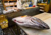 Big tuna on table for cutting — ストック写真