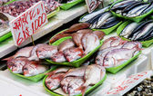 Fresh fish in Japanese market3 — Foto de Stock