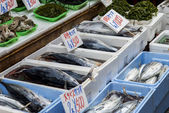 Fresh fish in Japanese market1 — Stock fotografie