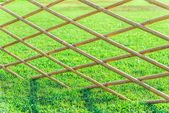 Crossed bamboo fence with green grass in the garden7 — Stock Photo