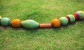 Céramique colorée sur le jardin — Photo