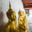 Row of Buddha statue in the Thai temple1 — Stock Photo