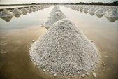 Linha de sal o sal farm3 — Fotografia Stock