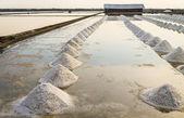 Row of salt pile in Salt pan — Stock Photo