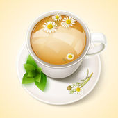Cup of chamomile tea — Stock Vector