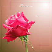 Vector rose on abstract background — 图库矢量图片