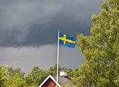 Rainy swedish summer — Stock Photo