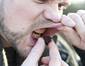 Taking a pinch of moist snuff — Stock Photo
