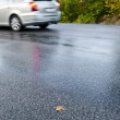 Wet road — Stock Photo #13781812