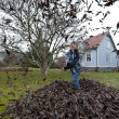 Stock Photo: Raking leaves in garden
