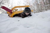 Snow sledge overturn — Stock Photo