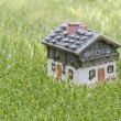 House on the grass - Stock Photo